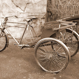 Tricycle by Philip Molyneux - Transportation Bicycles ( ride, sepia, tricycle, three wheeler, transportation, monotone, bicycle )