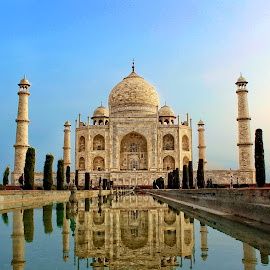 The glorious Taj by Matthew Cordwell - Buildings & Architecture Places of Worship