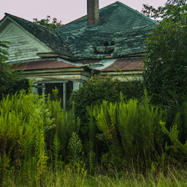 the house by Trey Walker - Novices Only Landscapes ( old, house, rustic, decay, abandoned )