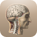 App Classic Anatomy APK for Kindle