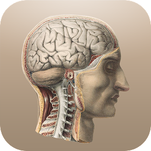 Free Download Classic Anatomy APK for Samsung