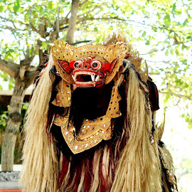 Barong bali by Yohanes Agustinus - News & Events Entertainment ( bali, barong, dance )