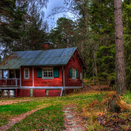 Red house in the woods by Bojan Bilas - Buildings & Architecture Homes ( home, building, ruissalo, finland, forest, architecture,  )