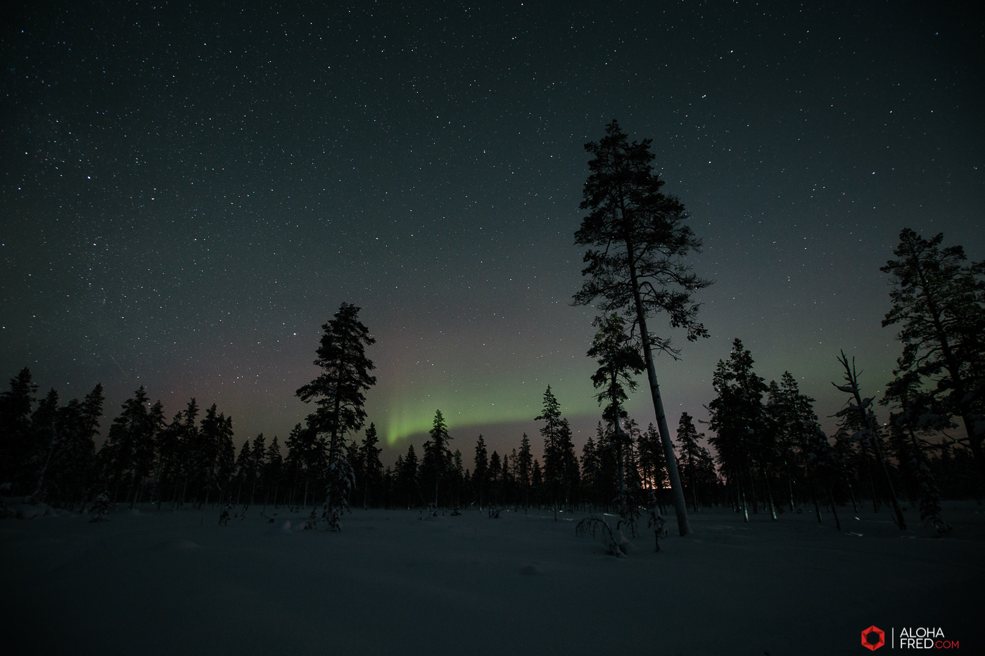 0035 - alohafred Laponie - _5E_1047