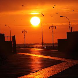 Coney Island Boardwalk Sunrise by Art Ography - City,  Street & Park  Neighborhoods ( beach, sunrise, birds, sun, boardwalk )