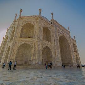 Taj Mahal up close by Priyantha Bhareti - Buildings & Architecture Statues & Monuments ( love, taj, sigma, taj mahal, agra, monument, india, fish eye )