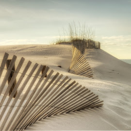 Beach, beach, beach by Jerry Perkins - Landscapes Beaches ( sand, fence, seaoats, ocean, beach )
