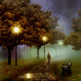 by Michael Dalmedo - Digital Art Things ( lights, stroll, bench, park, grass, autumn, trees, leaves, walk,  )