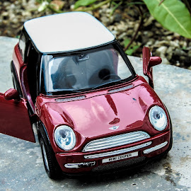 Mini Cooper by Carboxylic Tan - Artistic Objects Toys