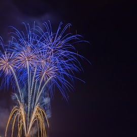 Blue Cluster by Pat Green - Abstract Fire & Fireworks ( steilacoom, events, 4th of july 2013, fireworks, things, wa, places, 2013 holidays )