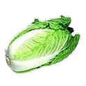 Fresh Vegetables Lianliankan icon