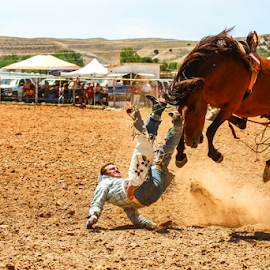 Bronc Buster by Stacey Cannon - Sports & Fitness Rodeo/Bull Riding ( rider, bucking horse, bronc rider, horse, wyoming, rodeo, western, bronco, bucking,  )