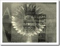 1º selo do the best