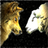 Wolf And Sheep icon