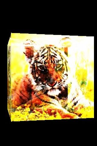 三維可愛的老虎
