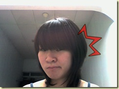 Snapshot_20080810_20