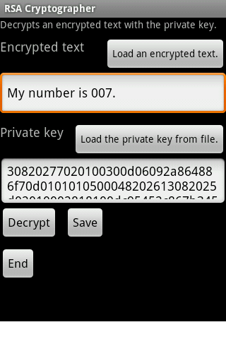 RSA Cipher Cat