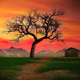 Tree-Sunset 3D by Jamie Keith - Illustration Places