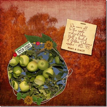 apples-9-24-08