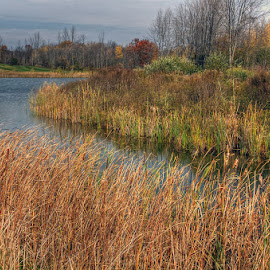 avoidable hazard by JERry RYan - Landscapes Prairies, Meadows & Fields