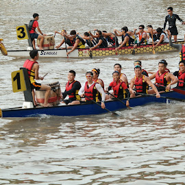 Dragon Boats by Koh Chip Whye - Transportation Boats (  )