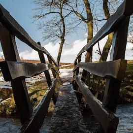 Troll bridge by Russ Burton - Buildings & Architecture Bridges & Suspended Structures ( winter, wooden, padley gorge, bridge, derbyshire )