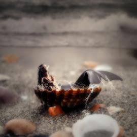 Siren's Beckoning. by Michael Dalmedo - Digital Art Things