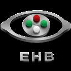 Eye Handbook icon