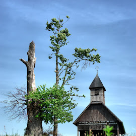 Wooden church II by Dalia Kager - Buildings & Architecture Places of Worship