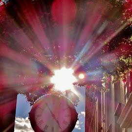 Pink Sunshine  by Danielle Bodkin - City,  Street & Park  Street Scenes