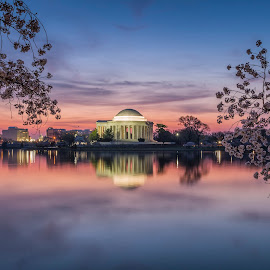 Yoshino sunrise by Edward Kreis - Buildings & Architecture Statues & Monuments ( reflection, warm, jefferson memorial, neutral density, lee 0.9 gnd, pastels, cherry, tourist, light painting, dawn, yoshina, washington dc, long exposure, sunrise, tidal basin, filter )