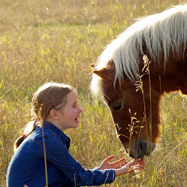 by Giselle Pierce - Babies & Children Children Candids ( child, field, miniature horse, face, little girl, girl, mane, grass, horse, children, head )
