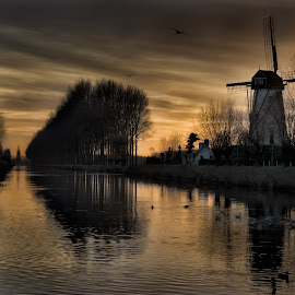 Damme Windmills by Colin Dixon - Landscapes Waterscapes ( water, canals, sunset, belgium, damme, windmills )