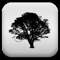 森林聽起來放鬆 icon