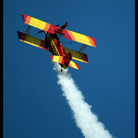 On the Wings of a Plane!  by Dale Carney - News & Events Entertainment ( adventurous, airplanes, wing walker, airshows,  )