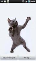 Screenshot of Dancing Cat