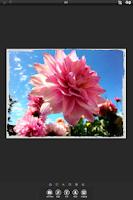 Screenshot of PhotoArtista - Oil