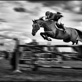 Almost flying  by Etienne Chalmet - Black & White Animals ( animals, black and white, horse, outdoors, jump )