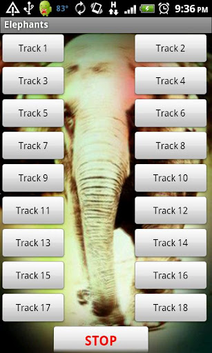 象のサウンドエフェクト|玩娛樂App免費|玩APPs