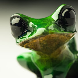 Macro frog by Brian Butters - Artistic Objects Other Objects ( macro, knick knack, frog, green, close up, eyes )