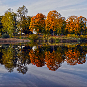fall at the water  by Stefan Pettersson - Landscapes Waterscapes ( sweden, autumn, colors, beautiful, fall )