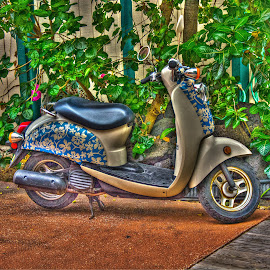 Hawaiian Scooter by Chad Hamik - Transportation Other (  )