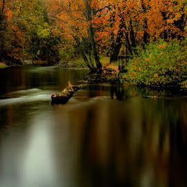 Down the Looking Glass by Matthew Winn - City,  Street & Park  City Parks ( michigan, autumn, looking glass river, river )
