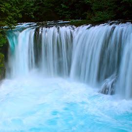 Spirit Falls by Gabriel Gutierrez - Landscapes Waterscapes ( washington, pure, nature, blue, waterfall, travel,  )