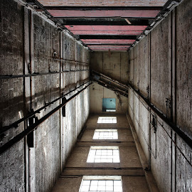 Elevator Shaft by Ashley McCuen - Buildings & Architecture Decaying & Abandoned ( elevator, building, red, color, windows, architecture, detroit michigan fisher building, forgotten, abandoned )