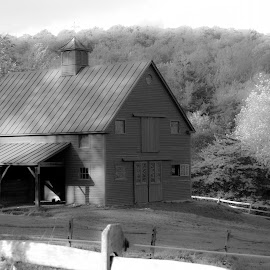 Your Majesty by Micki Ortiz - Buildings & Architecture Other Exteriors ( hills, countyr, barn, black and white, vermont )
