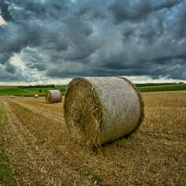 by Dragan Rakocevic - Landscapes Prairies, Meadows & Fields