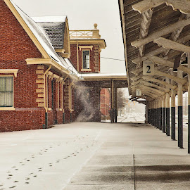 Train Station by Carol Plummer - Buildings & Architecture Other Exteriors