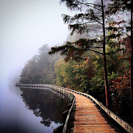 by Donna Edgeworth - Instagram & Mobile iPhone ( cherawstatepark, scstateparks, ultimateoutsider, autumn, fall, discoversc, fog, boardwalk )