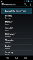 Screenshot of Cebuano Basic Phrases
